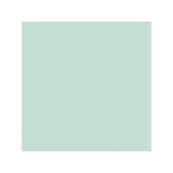 "Lee Filters Cosmetic Emerald 24x21"" Gel Filter Sheet"
