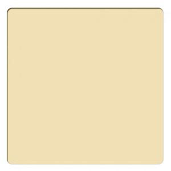 """Schneider Optics 4 x 4"""" Solid Color Gold 2 Water White Glass Filter"""