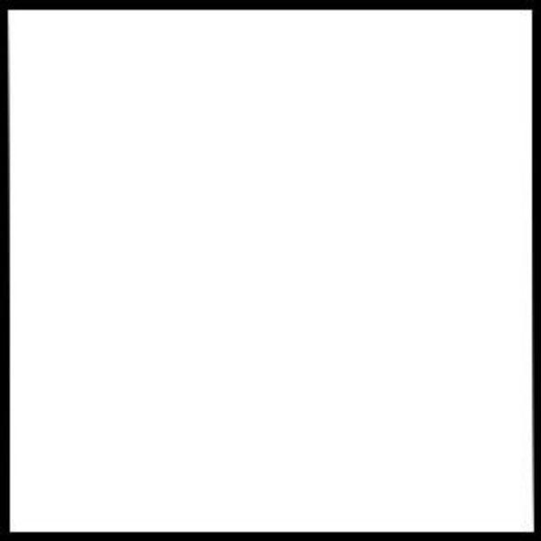 "Rosco 101030294825 48""x25' Roll Cinegel #3029 Silent Frost Filter"