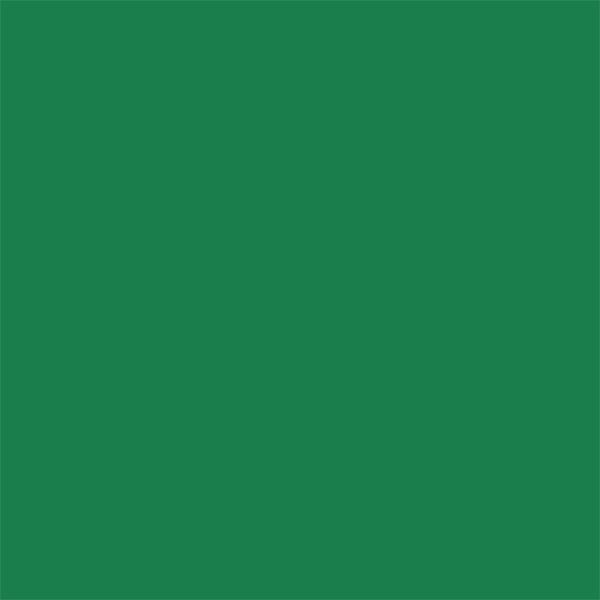 """Savage 86"""" x 36' Widetone Seamless Background Paper - #35 Holly"""