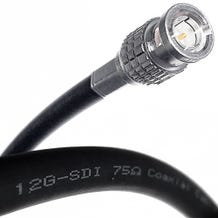 Canare 12G-SDI UHD 4K Single-Channel BNC Cable - 25ft