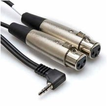 Hosa Technology Stereo Mini Angled Male to Two 3-Pin XLR Female Y-Cable - 2'