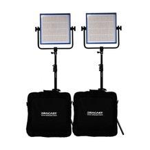 Dracast LED1000 Pro DayLight 2-Light Kit - Gold Mount Battery Plates