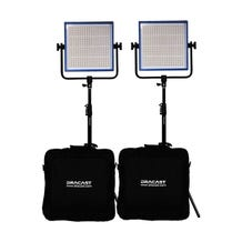 Dracast LED1000 Pro DayLight 2-Light Kit - Gold Mount Battery Plates
