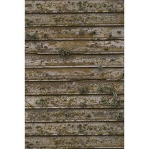 Savage Distressed Wood Wall Printed Vinyl Backdrop - 5x7ft