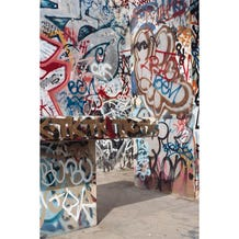Savage Graffiti Covered Alley Printed Vinyl Backdrop - 5x7ft